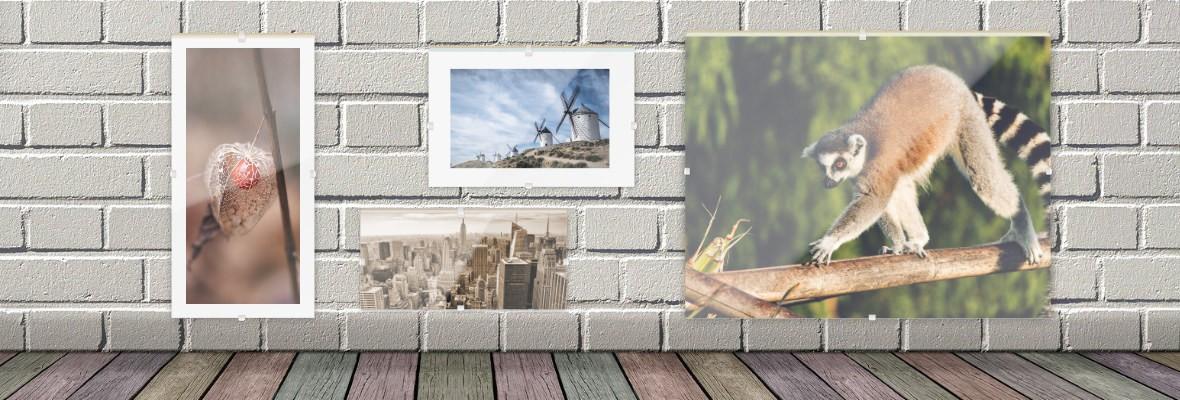 Cliprahmen / Rahmenlose Bildträger nach Maß online bestellen, individuelle Formate