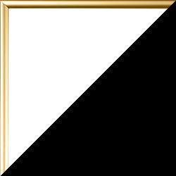 Individueller Bilderrahmen Modell Easy Farbe Gold