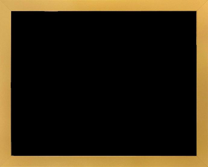 Individueller Bilderrahmen Modell Monaco Farbe Gold Schlicht